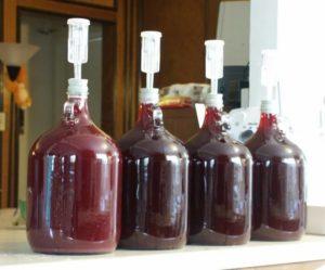 стеклянные бутыли для брожения